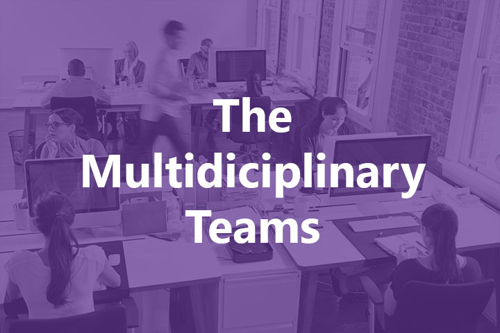 , The Importance of Working in a Multidisciplinary Team